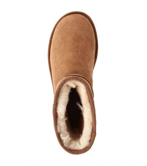 UGG Chestnut Classic Short Boots