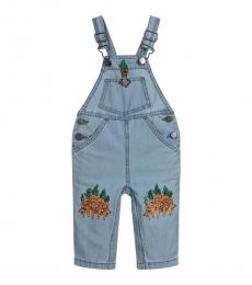Baby Boys Blue Chambray Dungarees