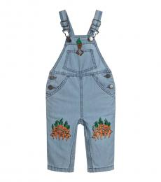 Baby Girls Blue Chambray Dungarees
