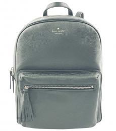 Kate Spade Spruce Chester Street Aveline Large Backpack