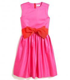 J.Crew Little Girls Wild Berry Bow Sash Dress