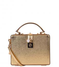 Dolce & Gabbana Gold Laminated Mini Satchel